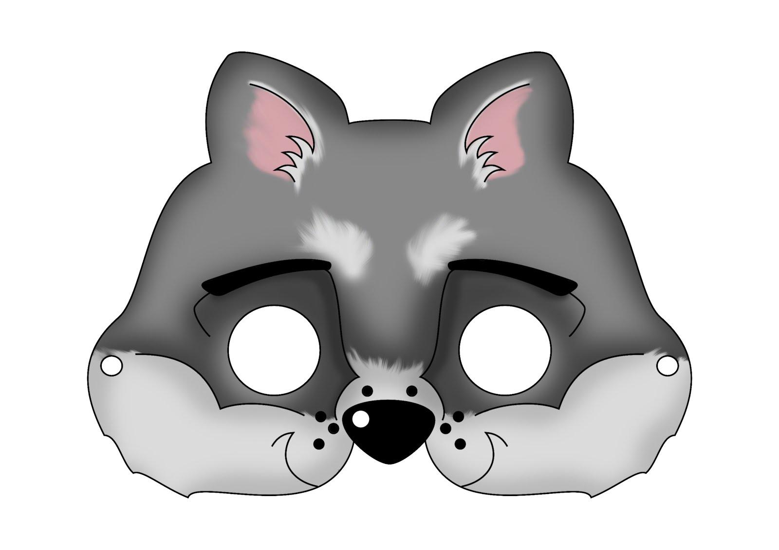 maschera procione