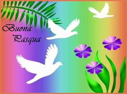 colombe bianche e violette