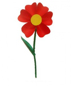 Un fiore da regalare