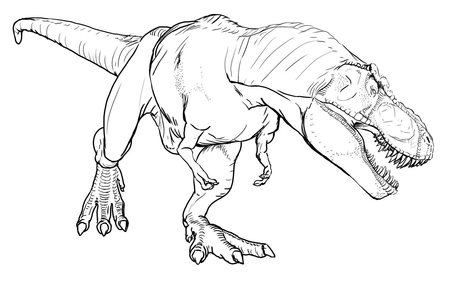 T rex bimbi di carta for Pesci da disegnare per bambini